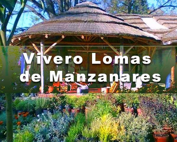 Vivero-Lomas-de-Manzanares
